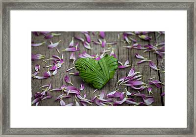 Palm Leaf Heart Framed Print by Aged Pixel