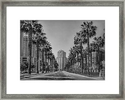 Palm-lined Parkway B/w Framed Print by Hanny Heim