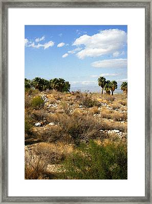 Palm Springs Indian Canyons View  Framed Print by Ben and Raisa Gertsberg