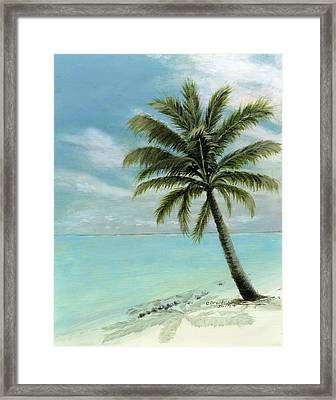 Palm Tree Study Framed Print by Cecilia Brendel