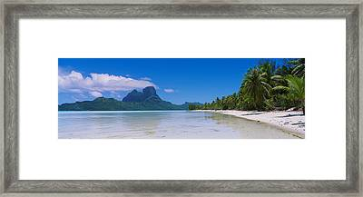 Palm Trees On The Beach, Bora Bora Framed Print by Panoramic Images