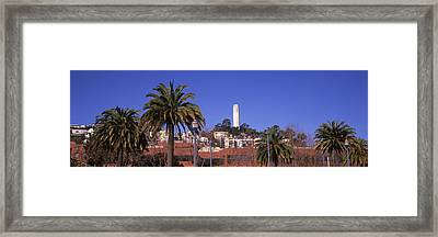 Palm Trees With Coit Tower Framed Print by Panoramic Images