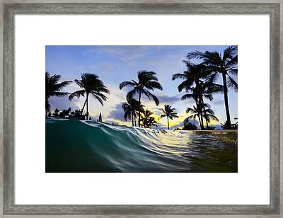 Palm Wave Framed Print by Sean Davey