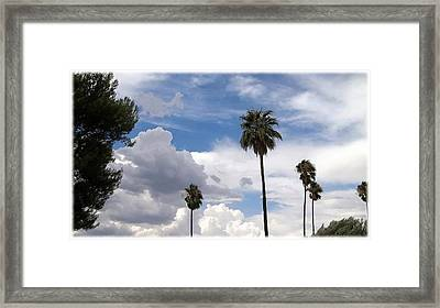 Palms And Clouds Framed Print by Glenn McCarthy Art and Photography