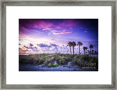 Palms On The Beach Framed Print by Marvin Spates