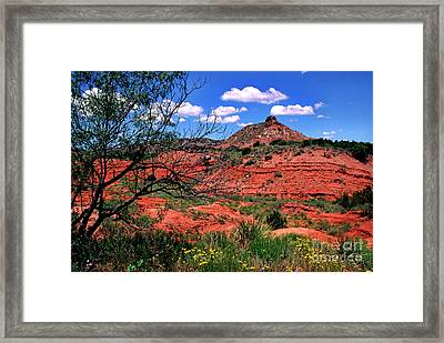 Palo Duro Canyon State Park Framed Print by Thomas R Fletcher