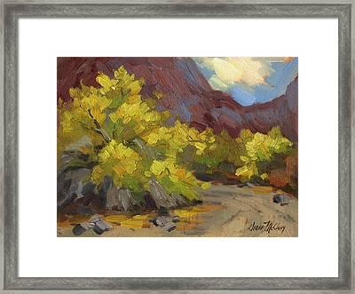 Palo Verde Trees Framed Print by Diane McClary