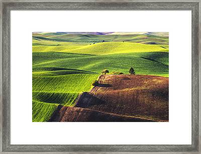 Palouse In Contrast Framed Print by Mark Kiver