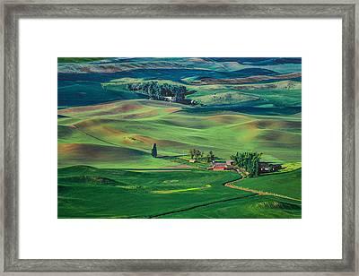Palouse - Washington - Farms - 4 Framed Print by Nikolyn McDonPalouse - Washington - ald