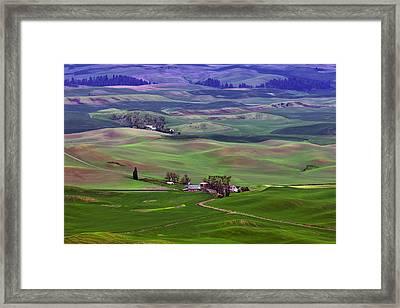 Palouse - Washington - Farms - 5 Framed Print by Nikolyn McDonald