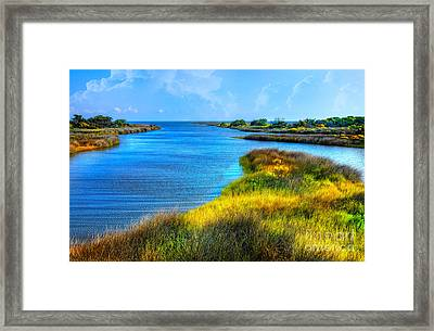 Pamlico Sound On Ocracoke Island Outer Banks Framed Print by Dan Carmichael