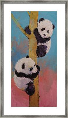 Panda Fun Framed Print by Michael Creese