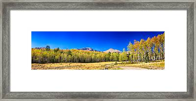 Panorama Autumn Bonanza Framed Print by James BO  Insogna