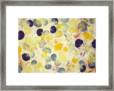 Pansy Petals Framed Print by James W Johnson