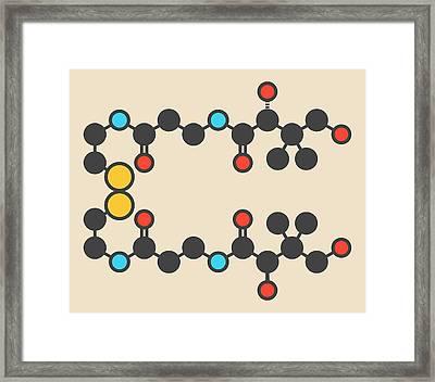 Pantethine Dimeric Vitamin B5 Molecule Framed Print by Molekuul