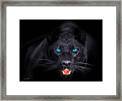 Panther Framed Print by Jean raphael Fischer