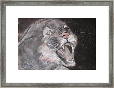 Panther Framed Print by Rebecca Wiltfong Frisbee