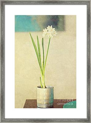 Paper Whites On Table Framed Print by Susan Gary