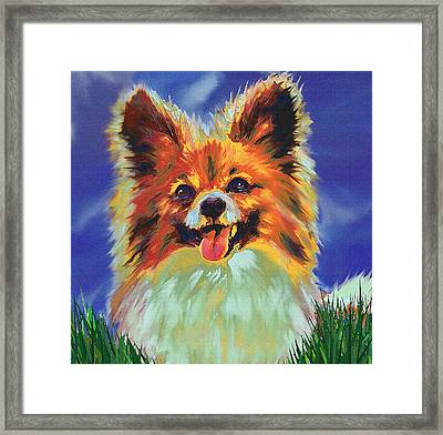 Papillion Puppy Framed Print by Jane Schnetlage