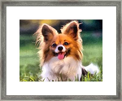 Papillon Framed Print by Gun Legler
