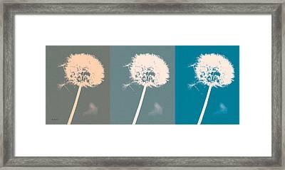 Parachute Balls Framed Print by Bob Orsillo