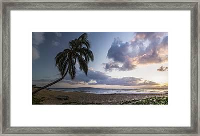 Paradise Framed Print by Brad Scott