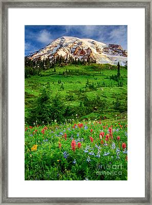 Paradise Framed Print by Inge Johnsson