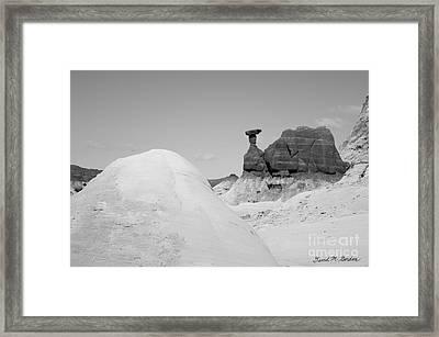 Paria Utah V Framed Print by Dave Gordon
