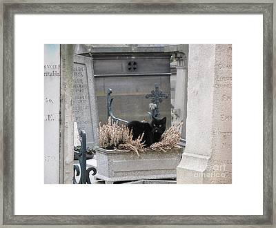 Paris Cemetery Cat - Le Chats Noir - Pere Lachaise - Black Cat On Grave Cemetery Art Framed Print by Kathy Fornal