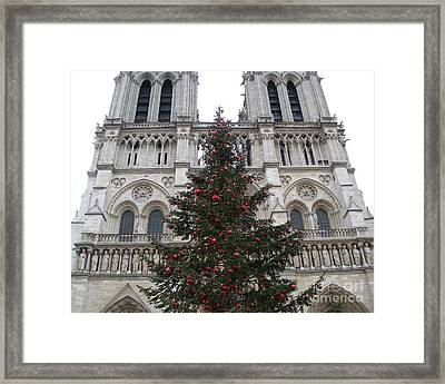 Paris Christmas Photography - Notre Dame Cathedral Christmas Tree - Paris At Christmas Framed Print by Kathy Fornal