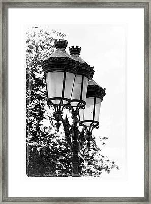 Paris Lamps - Black And White Framed Print by Carol Groenen