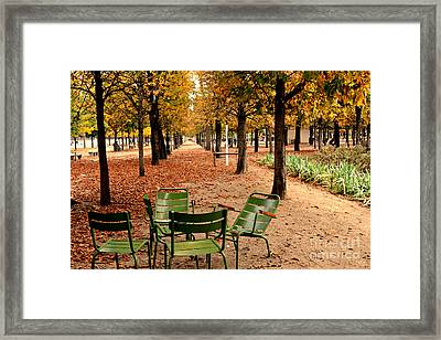 Paris Tuileries Gardens And Trees - Jardin Des Tuileries Gardens Parks Autumn - Paris Fall Autumn Framed Print by Kathy Fornal