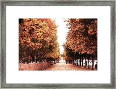 Paris Tuileries Row Of Trees - Jardin Des Tuileries Autumn Fall Colors Tree Landscape  Framed Print by Kathy Fornal