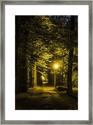 park Alley Framed Print by Jaroslaw Grudzinski