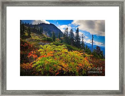 Park Butte Fall Color Framed Print by Inge Johnsson