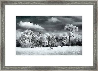 Park In Infrared Framed Print by Odon Czintos
