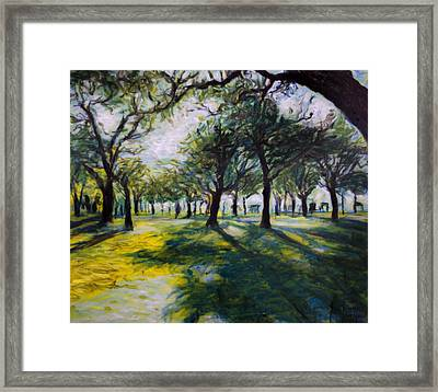 Park Trees Framed Print by Ron Richard Baviello