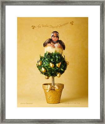 Partridge In A Pear Tree Framed Print by Anne Geddes