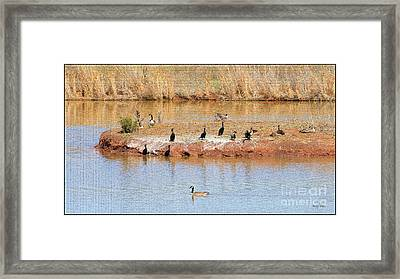 Party Island Framed Print by Betty LaRue