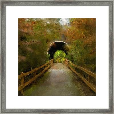 Pass Creek Bridge Framed Print by Dale Stillman
