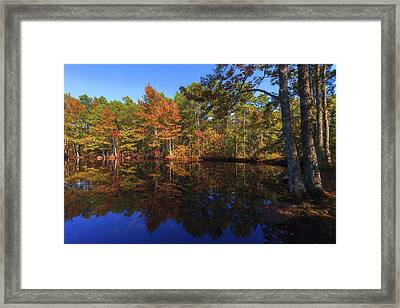 Passing Through Framed Print by Chad Dutson