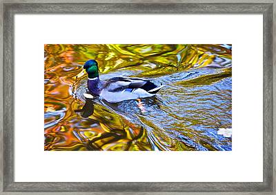 Passing Through Framed Print by Frozen in Time Fine Art Photography