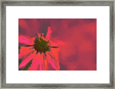 Passionate Pink Framed Print by Karol Livote