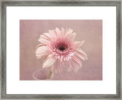Pastel Dreams Framed Print by Kim Hojnacki