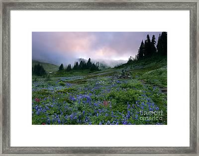 Pastel Mountain Dawn Framed Print by Mike Dawson
