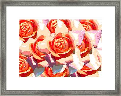 Pastel Roses Framed Print by Diana Burlan