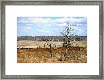 Pasture Gossip Framed Print by Paulette B Wright
