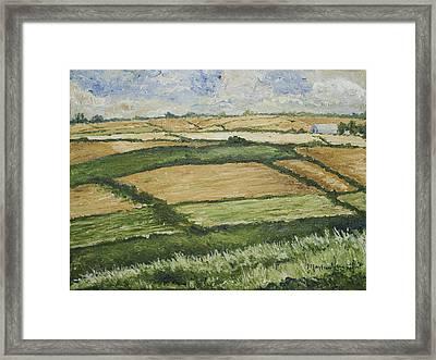 Patchwork Fields Framed Print by Monica Veraguth