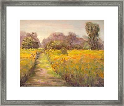 Path In The Prairie Framed Print by Robie Benve