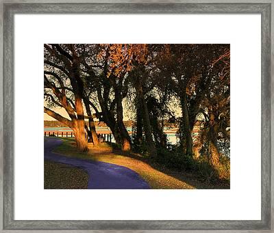 Path Framed Print by Joseph Tese